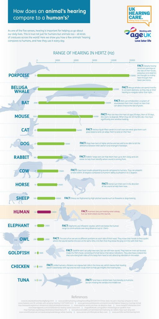 How do animals hearing compare to humans